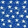 Stars on Blue Ripstop Fabric